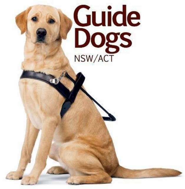 Guide Dogs For The Blind Puppy Raising Forms